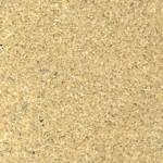 amarillo arena