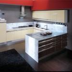 modern-kitchen-cabinets-tenes